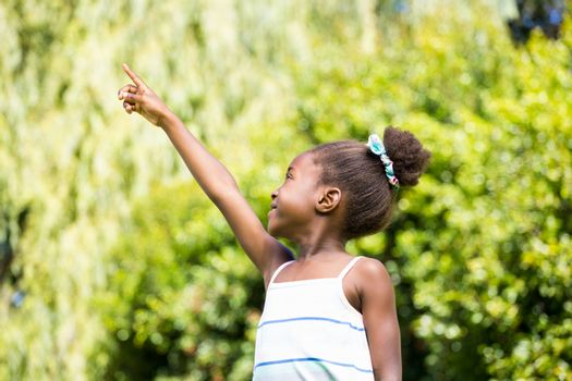 Mixed-race girl pointing the sky
