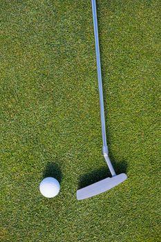 Golf club and ball on grassy field