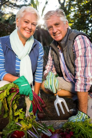 Portrait of happy couple gardeners with produce in farm