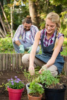 Happy female gardener plant at garden