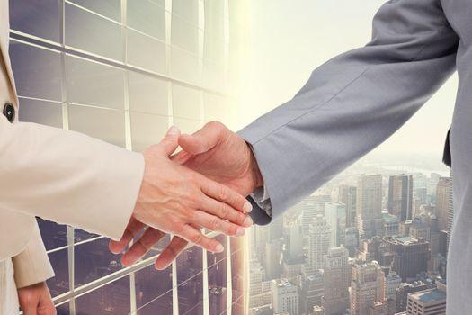 Business people doing a handshake