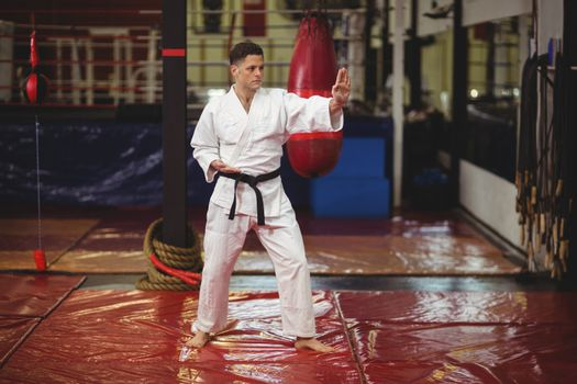 Karate player performing karate stance