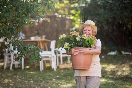 Senior woman carrying pot plant in garden