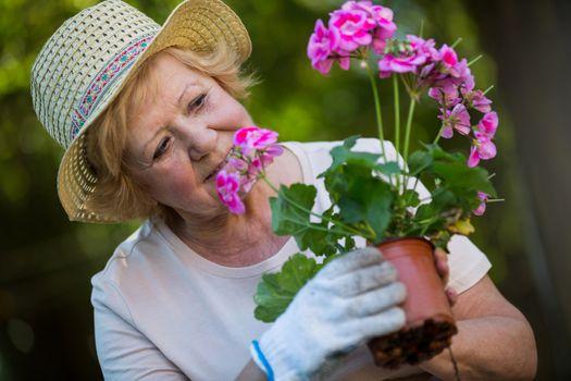 Senior woman holding pot plant in garden