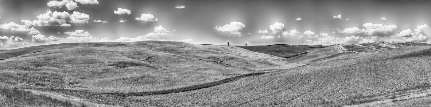 Panoramic landscape of dry fields in the countryside in Tuscany, Italy. Concept for agriculture and farmlands