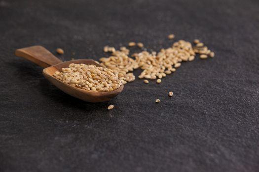 Scoop of wheat grains