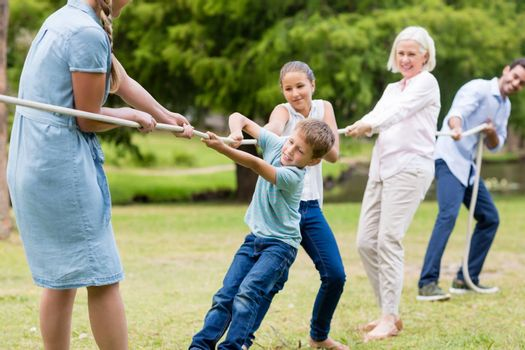 Multi-generation family pulling a rope in tug of war in park