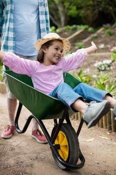 Father pushing daughter in wheelbarrow
