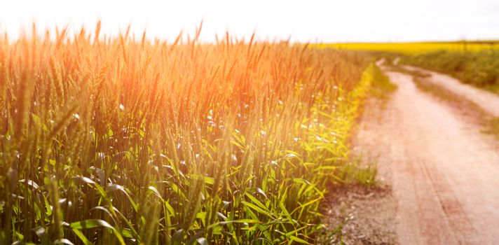 Empty path passing through fields