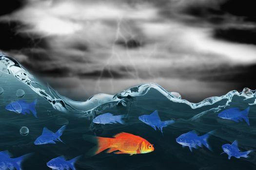 Composite image of goldfish