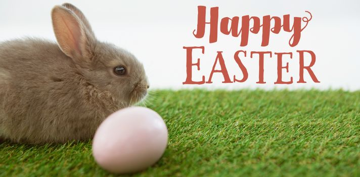 Easter greeting against easter eggs and easter bunny in grass