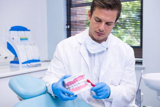 Dentist brushing dental mold while sitting at medical clinic