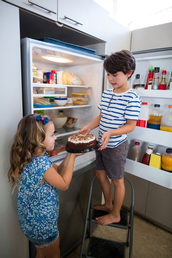 Siblings removing cake from refrigerator in kitchen