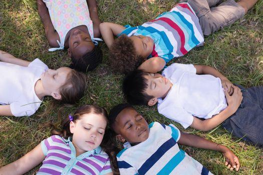 Friends sleeping on grassy field in forest