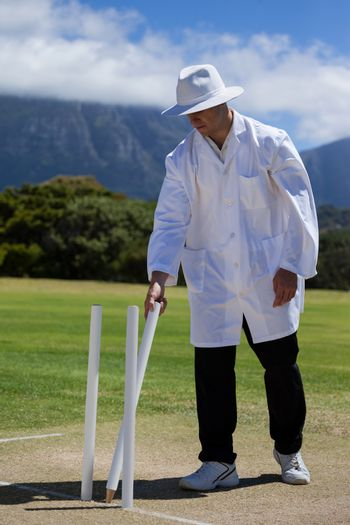 Umpire removing wicket on field at match