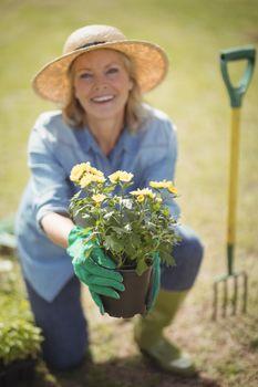 Senior woman offering a plant sapling in garden