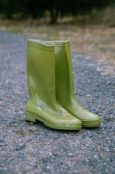 Pair of green wellington boot