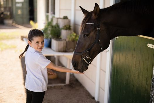 Girl feeding a horse in the stable