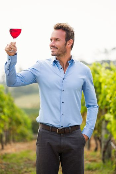 Smiling man looking at wineglass