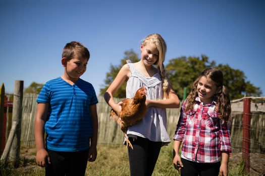 Kids carrying a hen in the farm