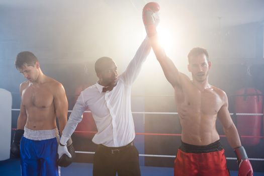 Referee lighting hand of winner in boxing ring