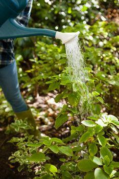 Woman watering plants at yard