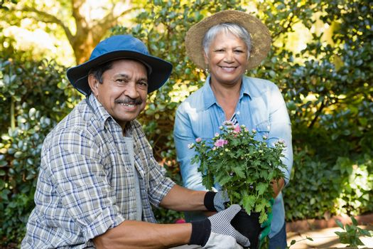 Couple holding sapling plant in garden