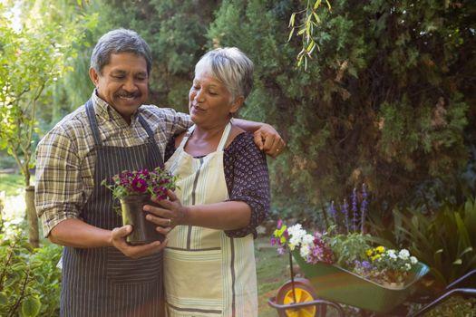 Senior couple looking sapling plant in garden