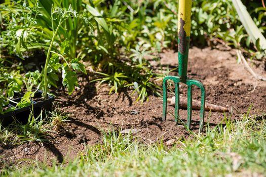 Garden fork at garden