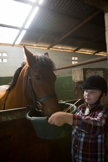 Girl feeding the horse in the stable