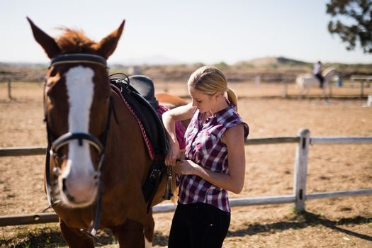 Young woman fastening saddle on horse