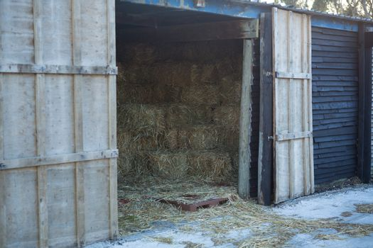 Large horse stable