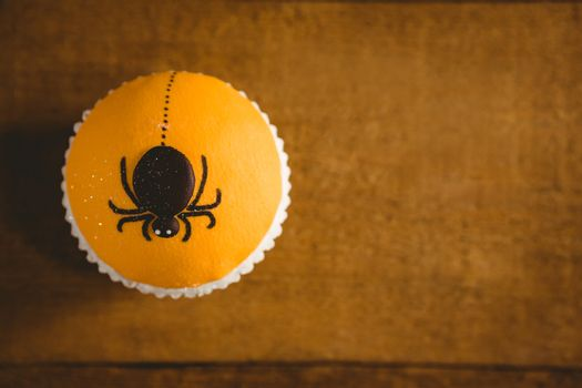 Close up of cup cake with artificial spider