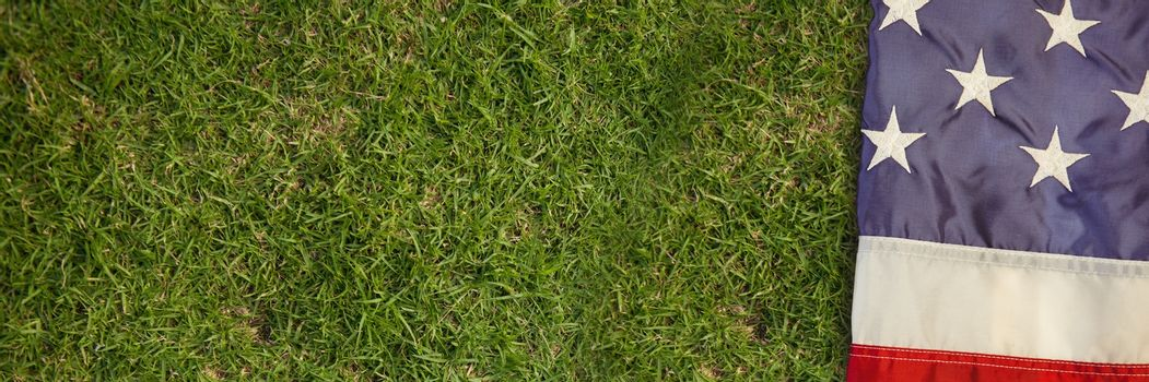 USA flag on grass
