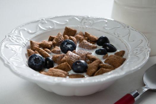 Breakfast cereal in bowl
