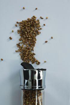 Coriander seeds spilling out of bottle