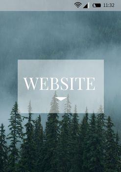 Website phone interface
