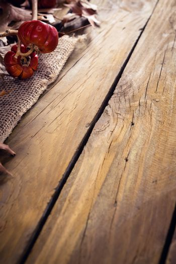 Dry leaves and mistletoe on wooden plank