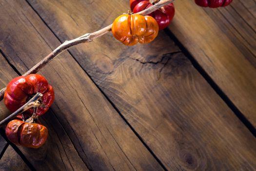 Mistletoe on wooden table