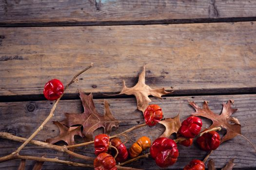 Dry leaves, branches and mistletoe on wooden plank