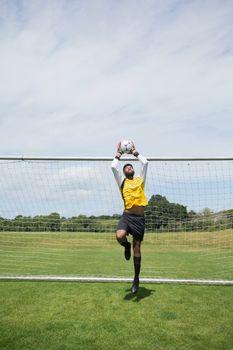Goalkeeper save the goal