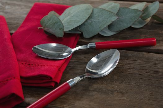 Spoon and leaves on red napkin