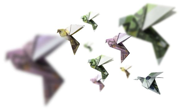 A flock of birds from Euro banknotes fly.