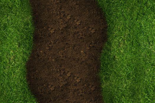 Vertical line crossing grass