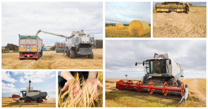 farming vehicles collage