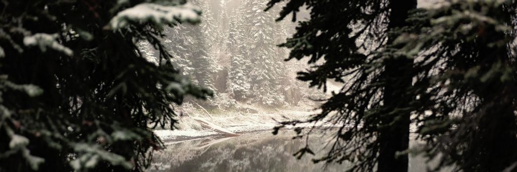River with snow covered trees on sides