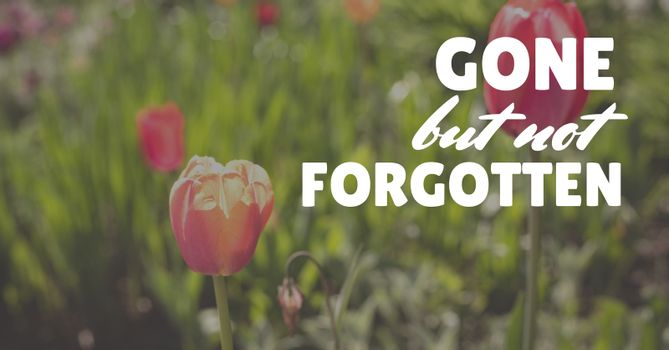 memorial day message with flower background