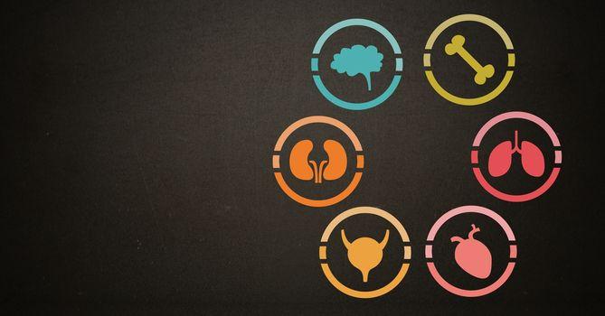 Human Body education organs icons
