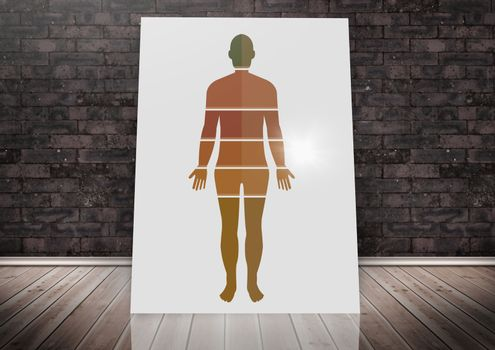 Human Body sections on card against wall