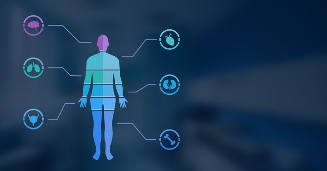 Human Body Chart and blue background
